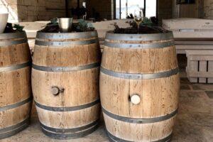 Visita a vinicola com degustaçao na Puglia